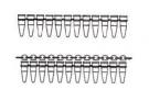 0.2 ml PCR 12-Tube Strips