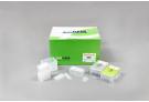 Exiprep™ 48 genomic DNA Kit