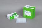 For Multiplex PCR (up to 20-plex) Dried-type Premix, PCR premix, PCR, premix, master mix, AccuPower
