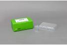 The HotStart Real-time PCR Reagents for dsDNA Binding Dye, qPCR premix, qPCR, qPCR master mix, hotstart qPCR, sybr green