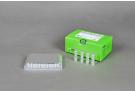 The HotStart One-step RT-qPCR Reagents for dsDNA Binding Dye, rt qPCR premix, rt qPCR master mix, rt qPCR, AccuPower, sybr green