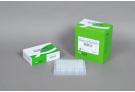 AccuPower® ProFi Taq PCR PreMix (96 T, 20 μl)