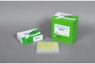 AccuPower® RT/PCR PreMix (96 T, 50 μl)