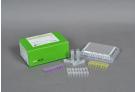 AccuPower® Enterovirus 71 Real-Time RT-PCR Kit