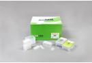 ExiPrep™ 48 Viral RNA Kit