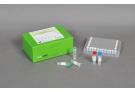 AccuPower® HIV-1 Quantitative RT-PCR Kit