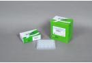 AccuPower® PCR PreMix (96 T, 50 μl)