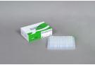 AccuPower® Actinobacillus Pleuropneumoniae (APP) PCR kit