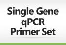 Single Gene qPCR Primer Set, qPCR primer