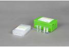 AccuPower® Salmonella spp. 3-Plex PCR Kit