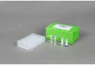 AccuPower® ETEC-Toxin 4-Plex PCR Kit