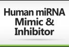Human miRNA mimic & inhibitor