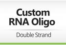 RNA Oligomer Order – Double Strand