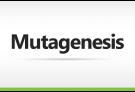 Mutagenesis Custom Order, mutagenesis